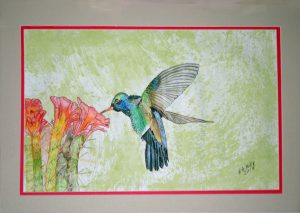 Eric Hummingbird
