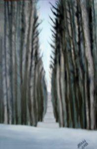 Jimmy Boardmantrees