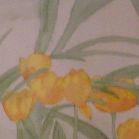 Spring_Tulips