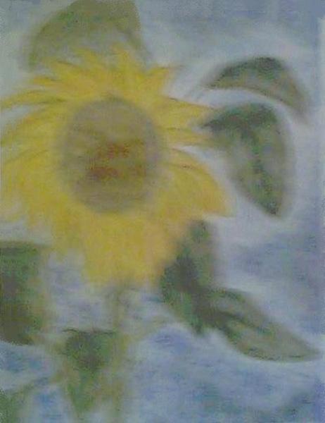 Wonderful_Sunnflower_