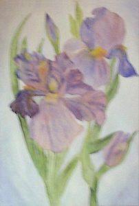 Purple_Irises