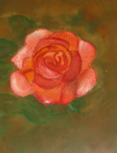 Bronzed_Peach_Rose