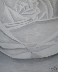 65 Palest Rose 2020-4238